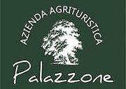 logo-palazzone2